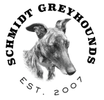 Schmidt Greyhounds