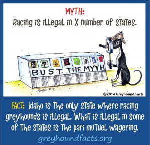 Illegal racing myth