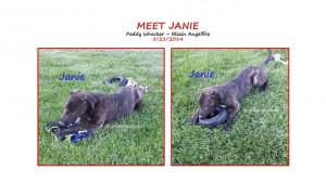 Meet Janie