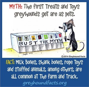 Treats and toys myth